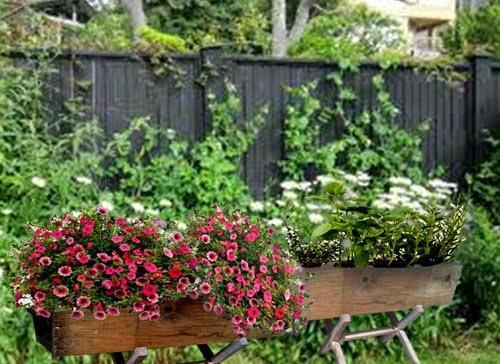 Cultivar en jardineras de madera paperblog - Plantas para jardineras ...