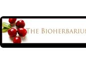Cosmética Natural calidad cercana: BIOHERBARIUM
