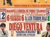 Feria Fuengirola