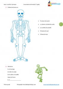 02 Los huesos_Página_2