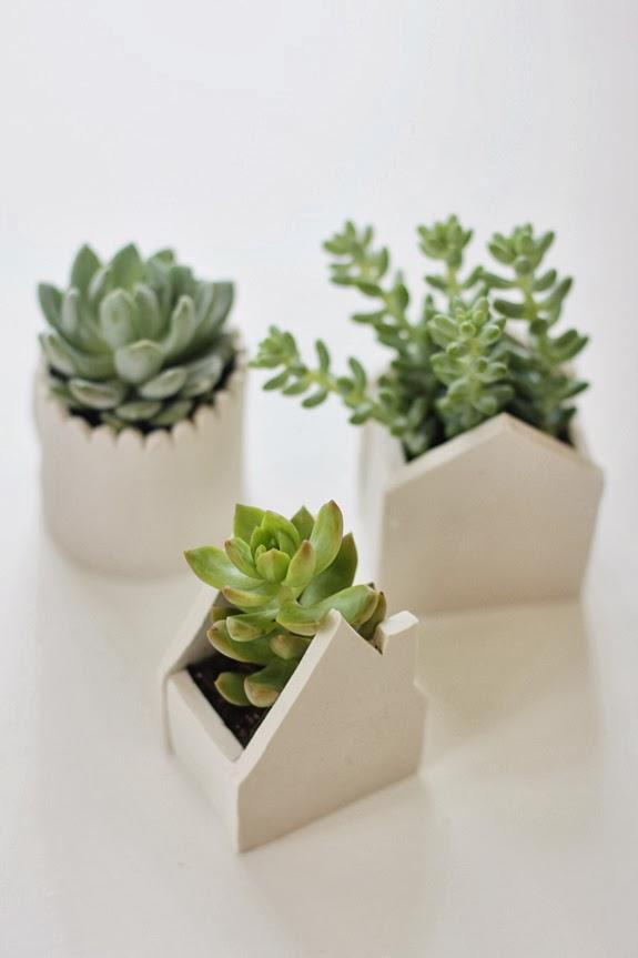 Diy maceteros originales para cactus paperblog - Macetas originales para plantas ...