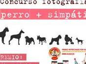 franquicia mascotas Husse organiza concurso Facebook para encontrar perro simpático España