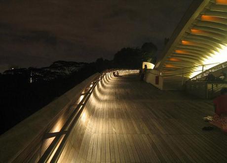 Puente Henderson Wave