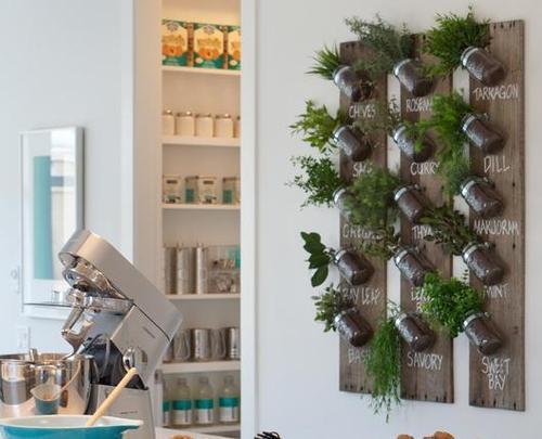 Peque o huerto de especias en el interior paperblog - Pequeno huerto en casa ...