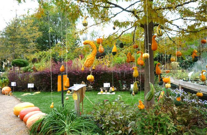Decora tu jard n en halloween paperblog for Como decorar un arbol de jardin