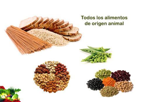 Las mejores fuentes de tiamina o vitamina b1 paperblog - Alimentos q contienen vitamina b ...