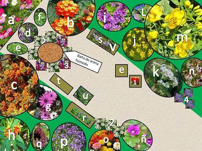 C mo dise ar un jard n de mariposas paperblog for Como disenar tu jardin