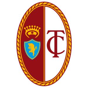 Torino@3.-old-logo