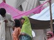 tiempos tragedias humanas seamos solidarios, Pakistán, India otros países necesitan
