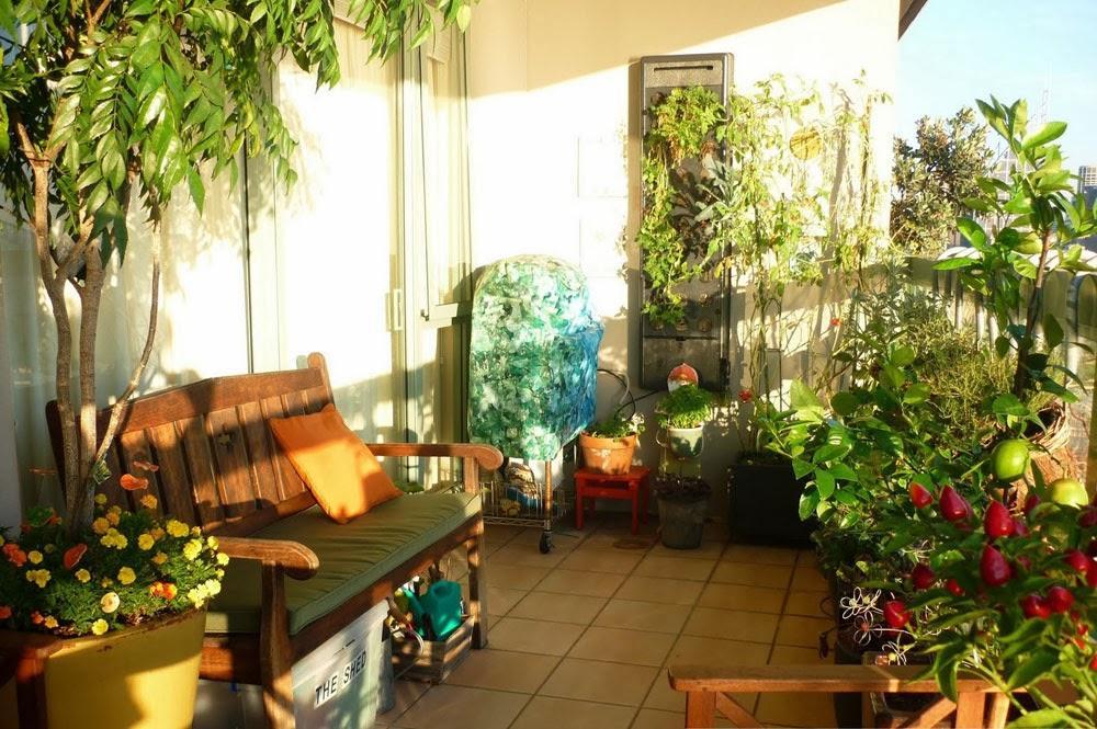 Como cultivar un huerto en casa paperblog - Como cultivar un huerto ...