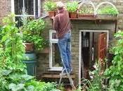 Como Cultivar Huerto Casa