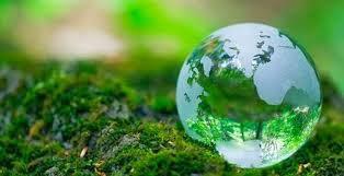 Cuidar el planeta donde vivimos es tarea de todos