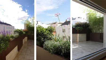 Jardin de dise o moderno en madrid para la terraza de un - Diseno jardines madrid ...
