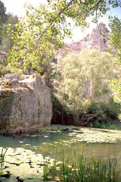 Nenúfares_río_Lobos_lugares_historia