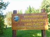 Parque Nacional Lago Puelo....... como llegar algo