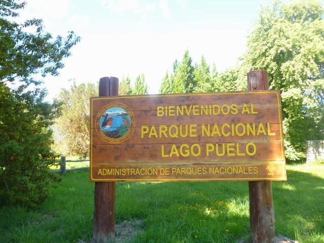 Resultado de imagen para parque nacional lago puelo