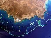 arrecife coral grande mundo