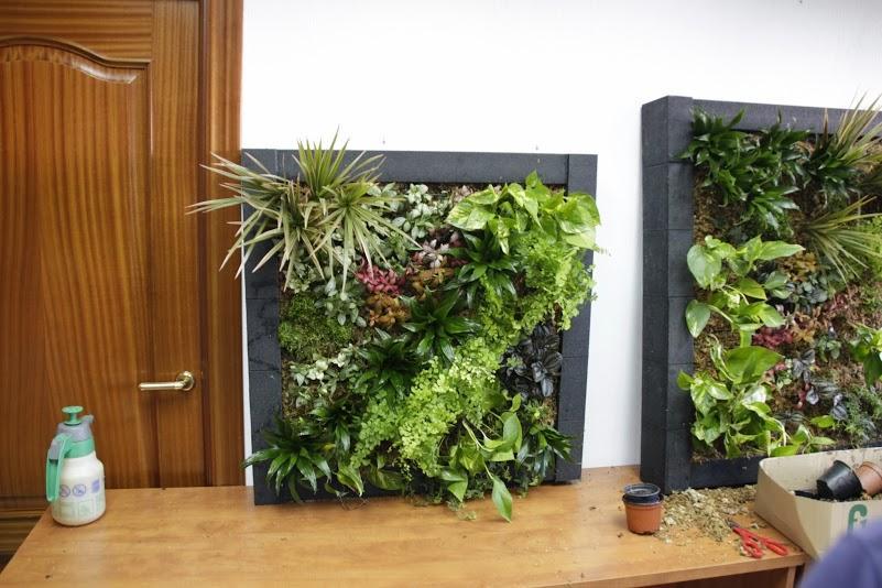 Ltimas 10 plazas para los cursos de jardines verticales for Jardines verticales mexico