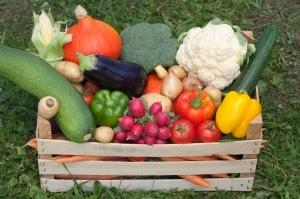 De la huerta a la mesa : comprar sin intermediarios