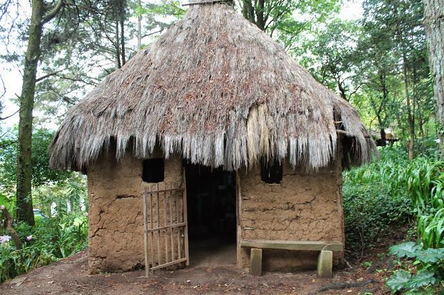 El Hotel de la Semana: Na Bolom en Chiapas - Paperblog