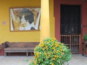 Hotel Semana: Bolom Chiapas