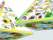 Pirámides alimentarias Europa