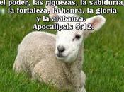 Cordero Dios