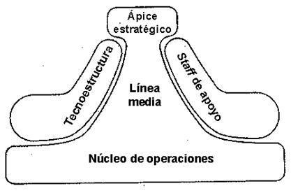 Las partes básicas de la organización como sistema