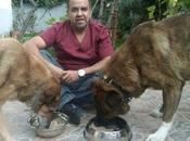 Curso Nutrición Canina México D.F.