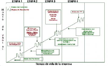 El ciclo de vida de la Empresa Familiar