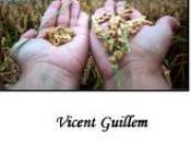 "AMOR (fragmento libro: ""Las LEYES ESPIRITUALES"" Vicent Guillem"