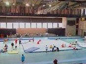 deportistas países participarán campeonato sudamericano adulto gimnasia artística