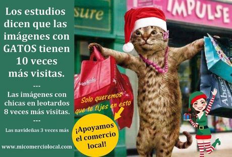 Imagen con gato y promoción del comercio local 02