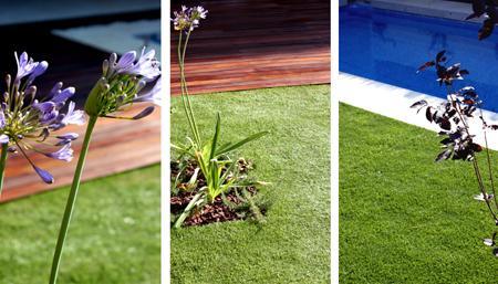 Jardin de dise o con piscina paperblog for Diseno futurista para un jardin con piscina