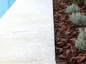 Jardin diseño piscina