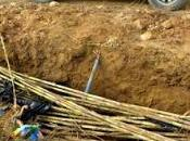 Agentes Protección Naturaleza Gobierno Aragón localizan desmantelan trampas para jabalíes Litera