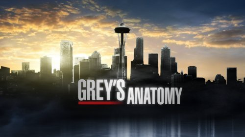 Grey's Anatomy 10x13 :  ADELANTO