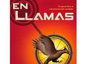 Ranking lecturas 2013