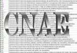 Epígrafes del CNAE 2009 (actualmente vigente)