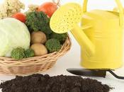 tendencias alimentación saludable para 2014