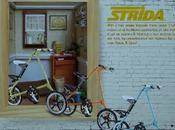Catálogo Stryda