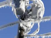 imágenes frío Canadá puedes perder (FOTOS)