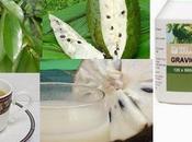 guanabana cura previene cancer