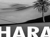 Asociación Solidaridad Pueblo Saharaui Hermanas inicia recogida alimentos