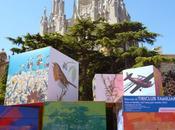 Barcelona, tercera cuidad mundo, fotografiada...19-01-2014...!!!