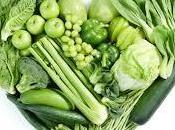 vegetales dieta (receta) nutrición perro cáncer