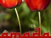 ¡Ramadán mubarak todas hermanas!