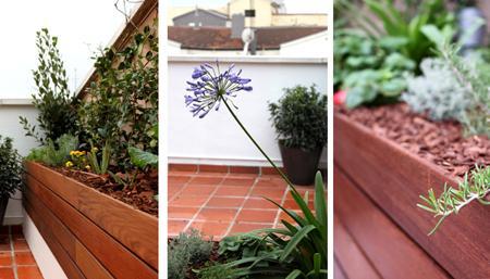 Dise o de jard n huerto urbano para la terraza de la - Huerto en la terraza ...