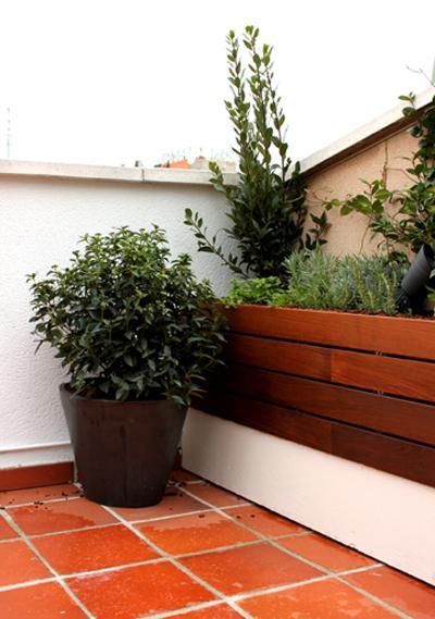 diseño de jardín & huerto urbano para la terraza de la azotea