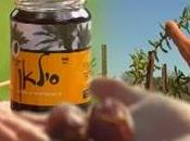 Israel: tierra estéril fluye leche miel